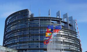 palamento europeo